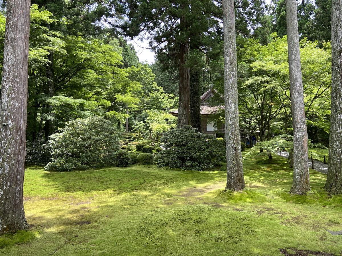 f:id:kyotoburari:20210625142832j:plain