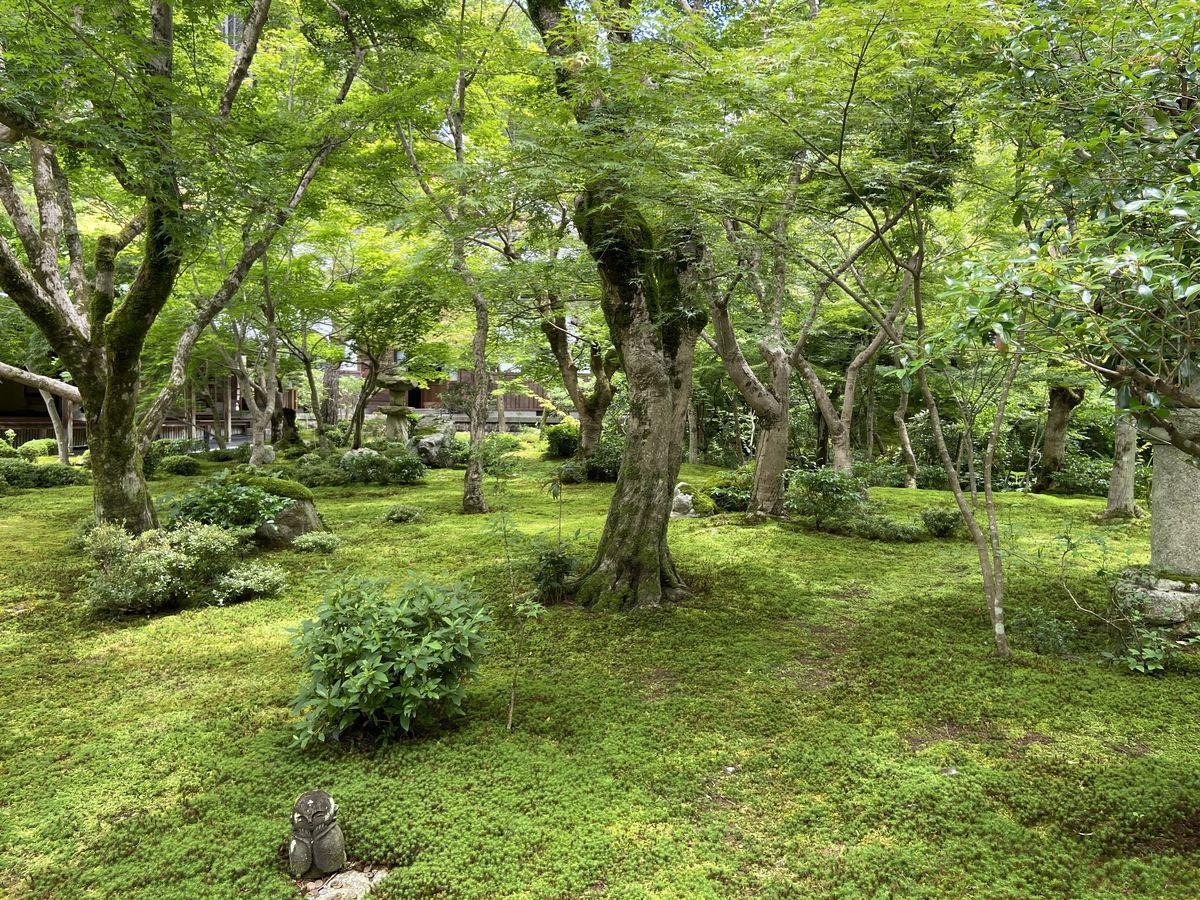 f:id:kyotoburari:20210705180345j:plain