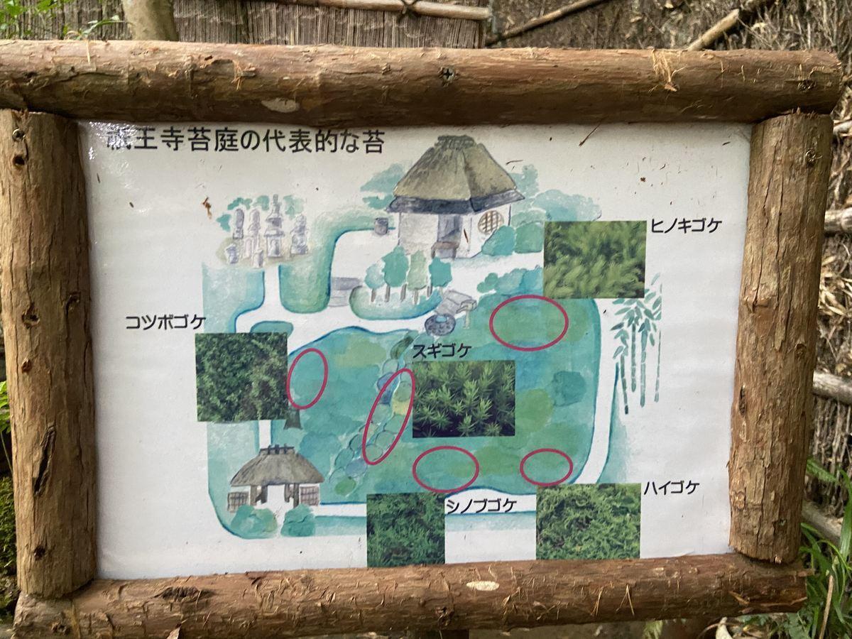f:id:kyotoburari:20210713134212j:plain