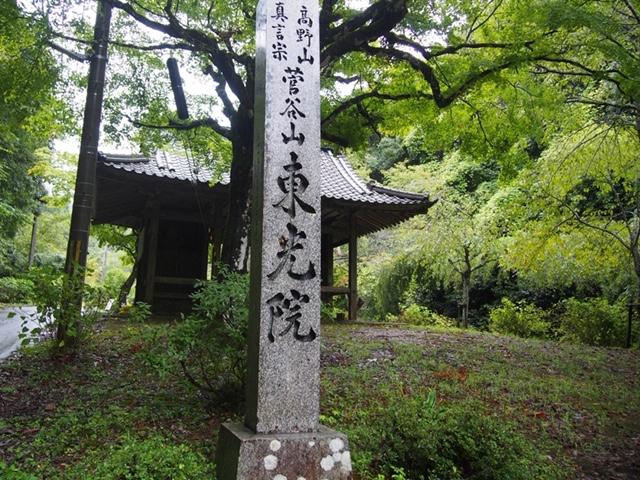 f:id:kyotohokububiyori:20190711213712j:plain
