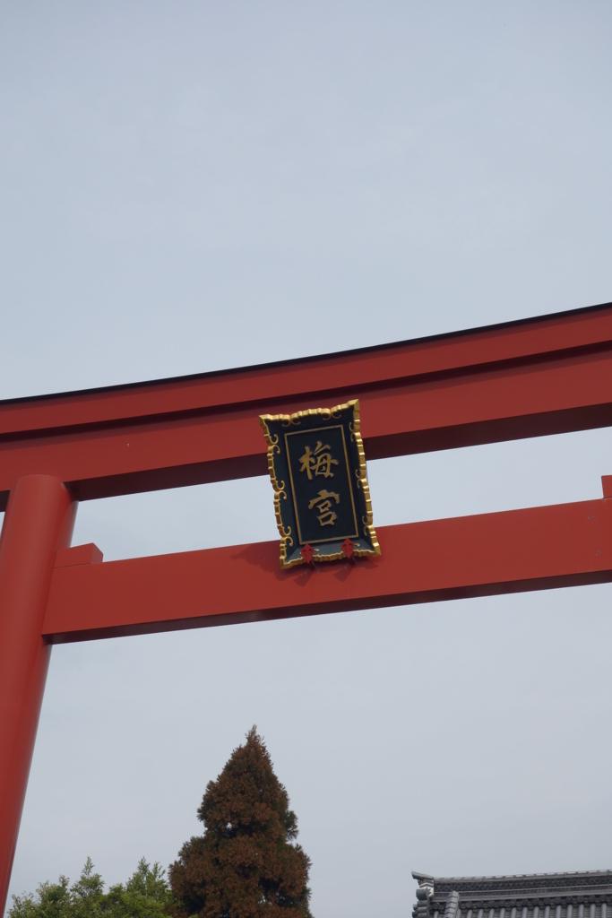 f:id:kyotomichi:20160306142315j:plain