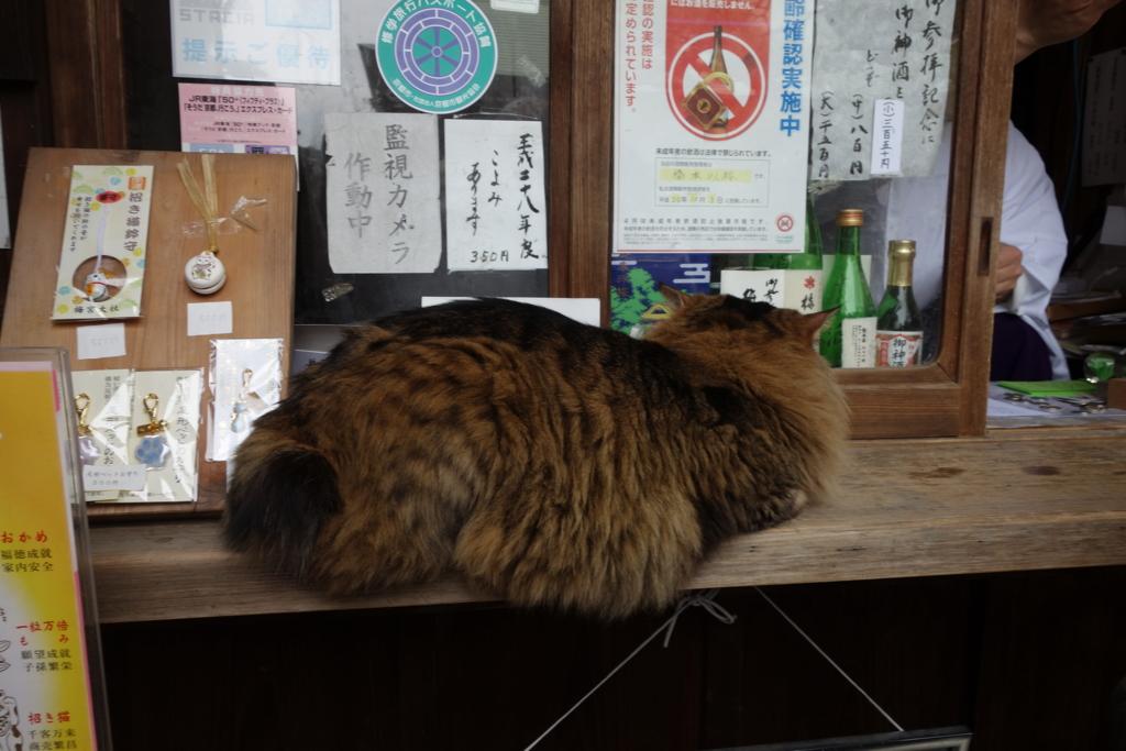 f:id:kyotomichi:20160306150724j:plain