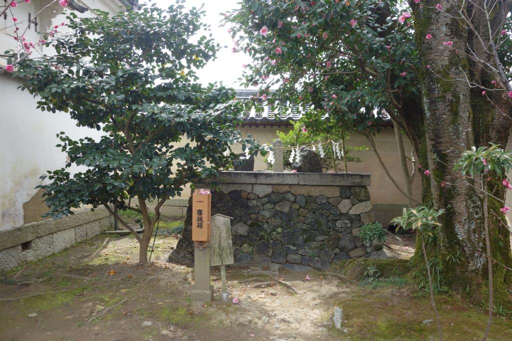 f:id:kyotomichi:20160306154315j:plain