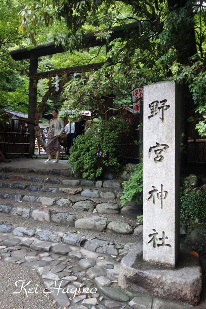 f:id:kyotomichi:20160630233935j:plain