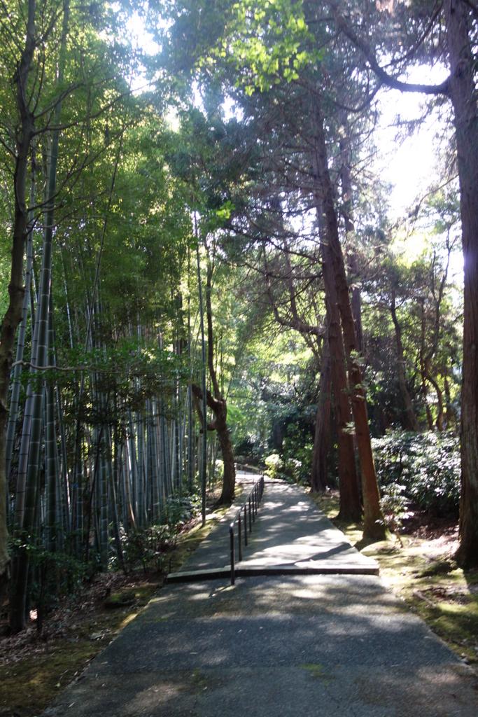 f:id:kyotomichi:20160820200052j:plain