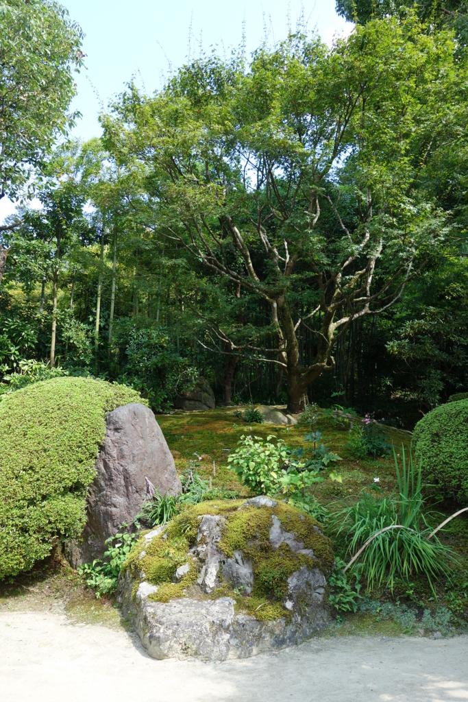 f:id:kyotomichi:20160903164650j:plain