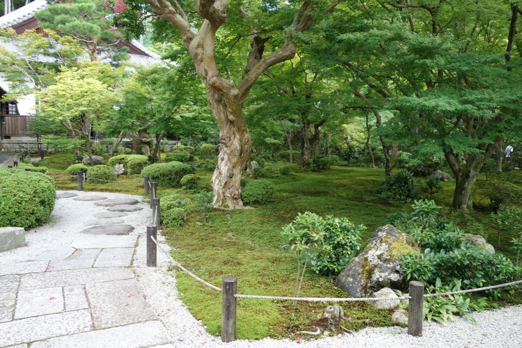 f:id:kyotomichi:20160903201729j:plain