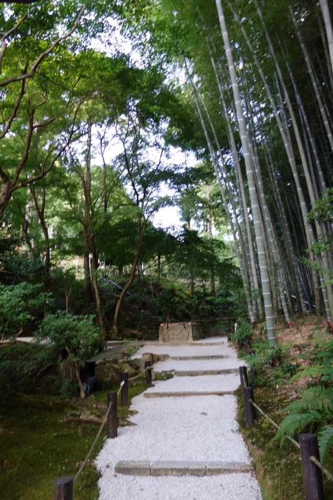 f:id:kyotomichi:20160903203625j:plain