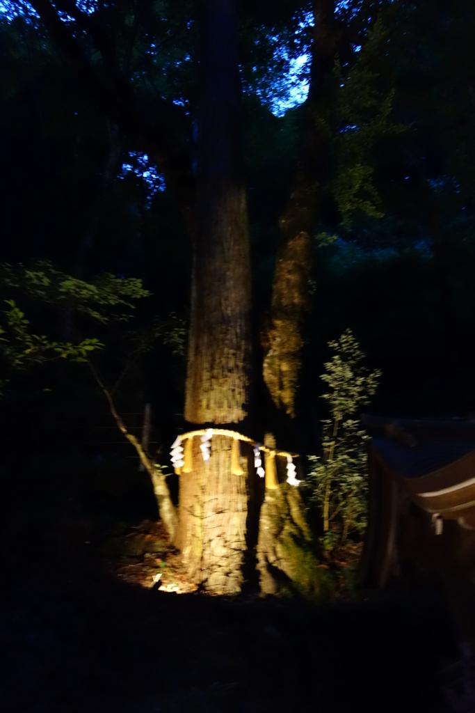 f:id:kyotomichi:20160903223600j:plain