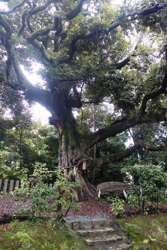 f:id:kyotomichi:20160925204559j:plain