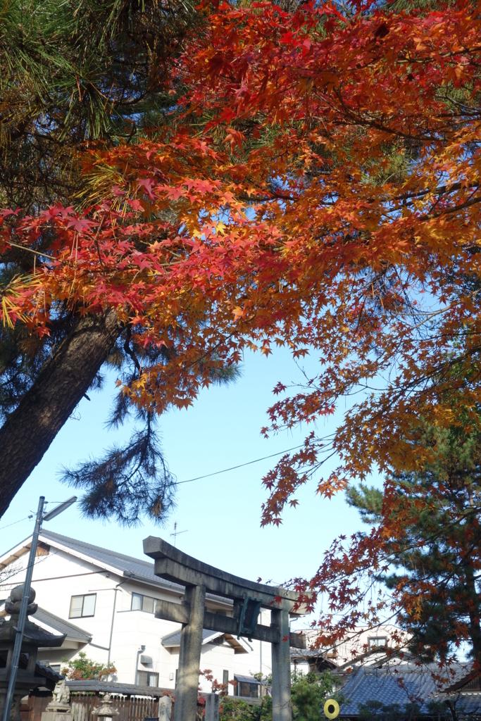 f:id:kyotomichi:20161223232929j:plain