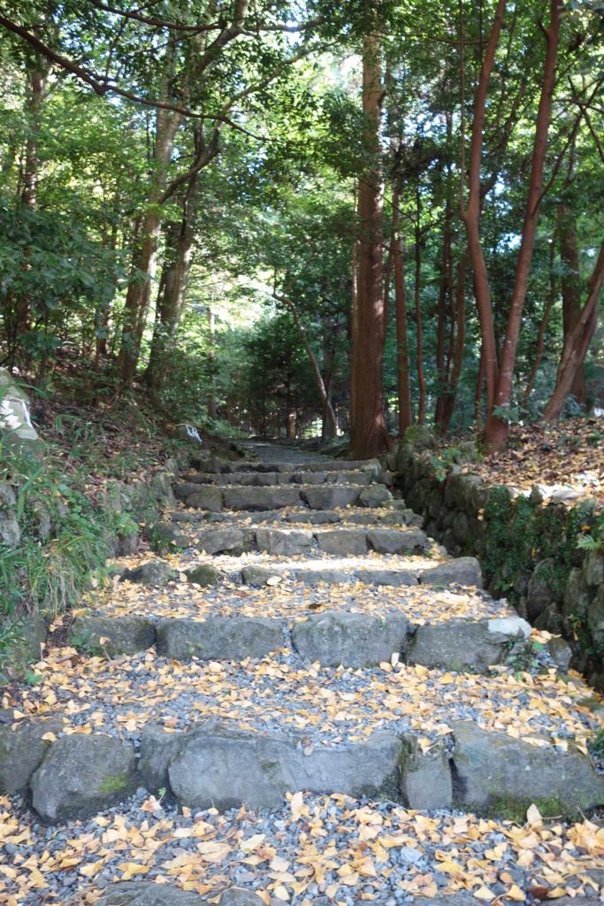 f:id:kyotomichi:20170102162438j:plain