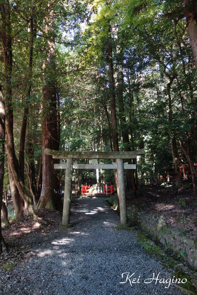 f:id:kyotomichi:20170102171011j:plain