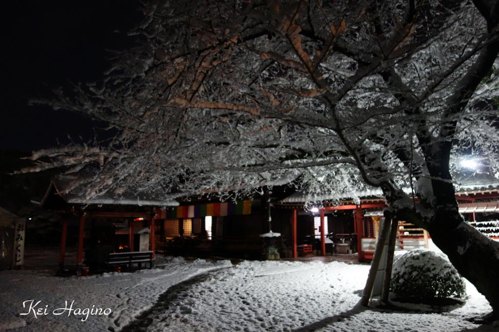 f:id:kyotomichi:20170102214631j:plain