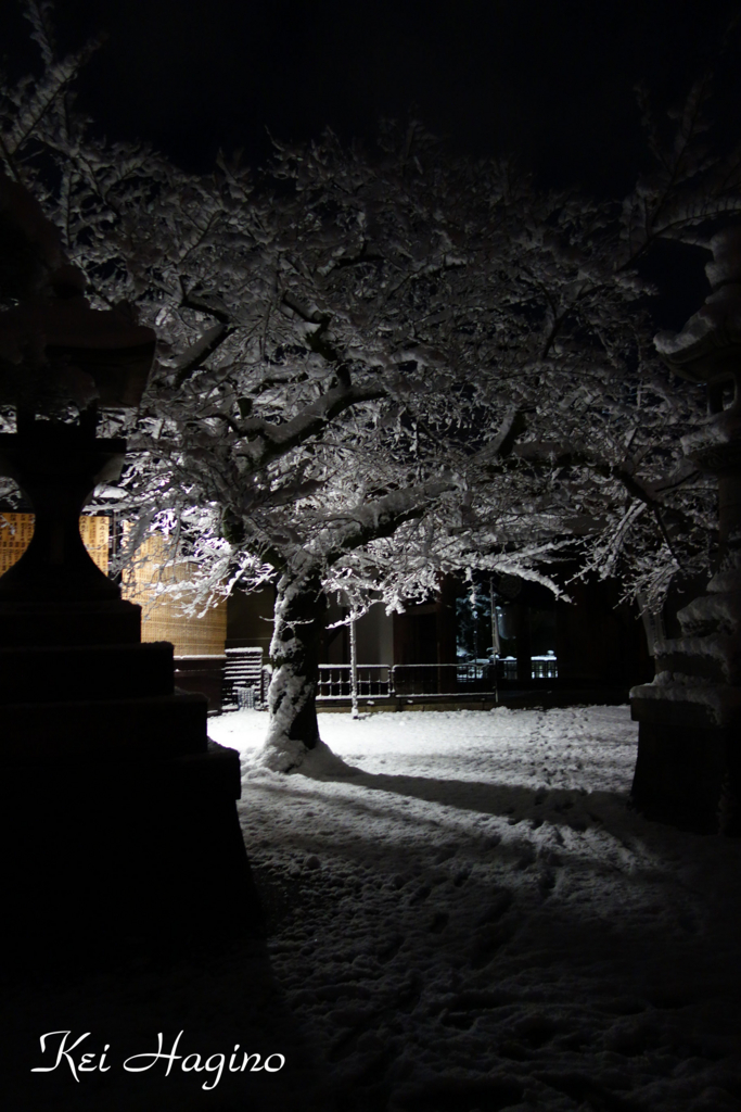 f:id:kyotomichi:20170102214805j:plain
