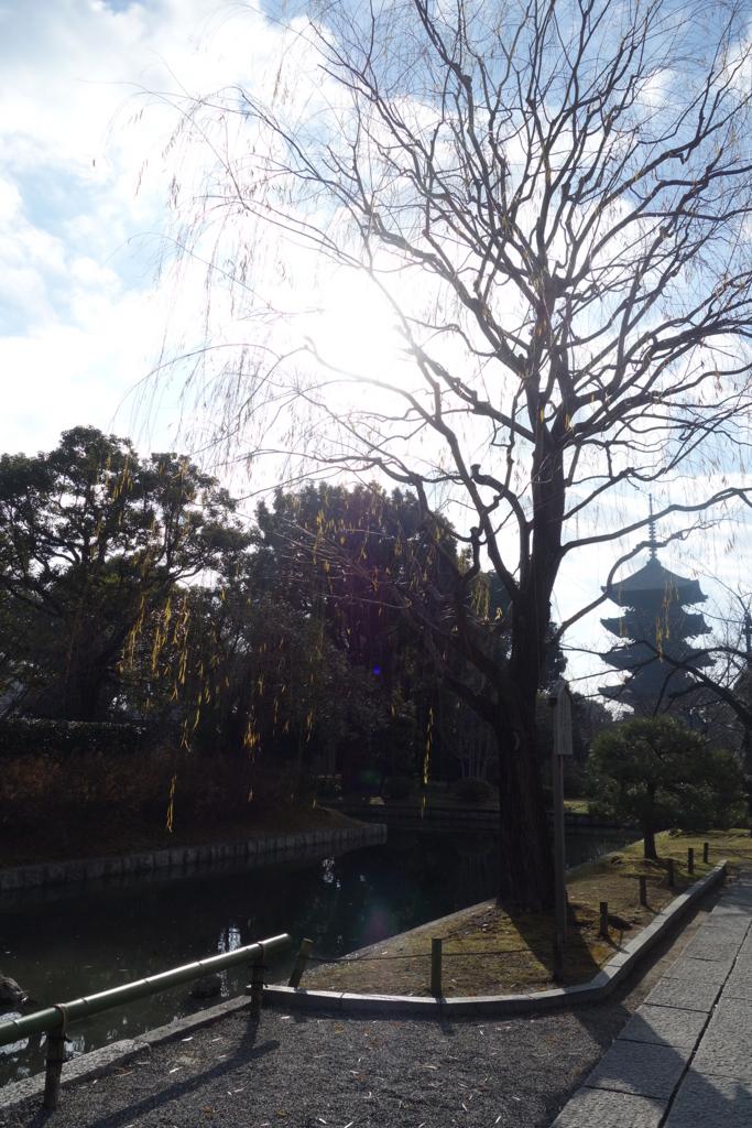 f:id:kyotomichi:20170102233728j:plain