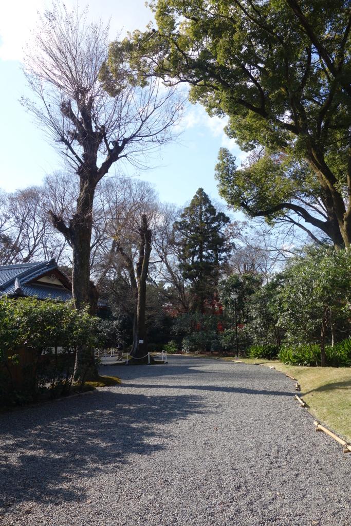 f:id:kyotomichi:20170103131730j:plain