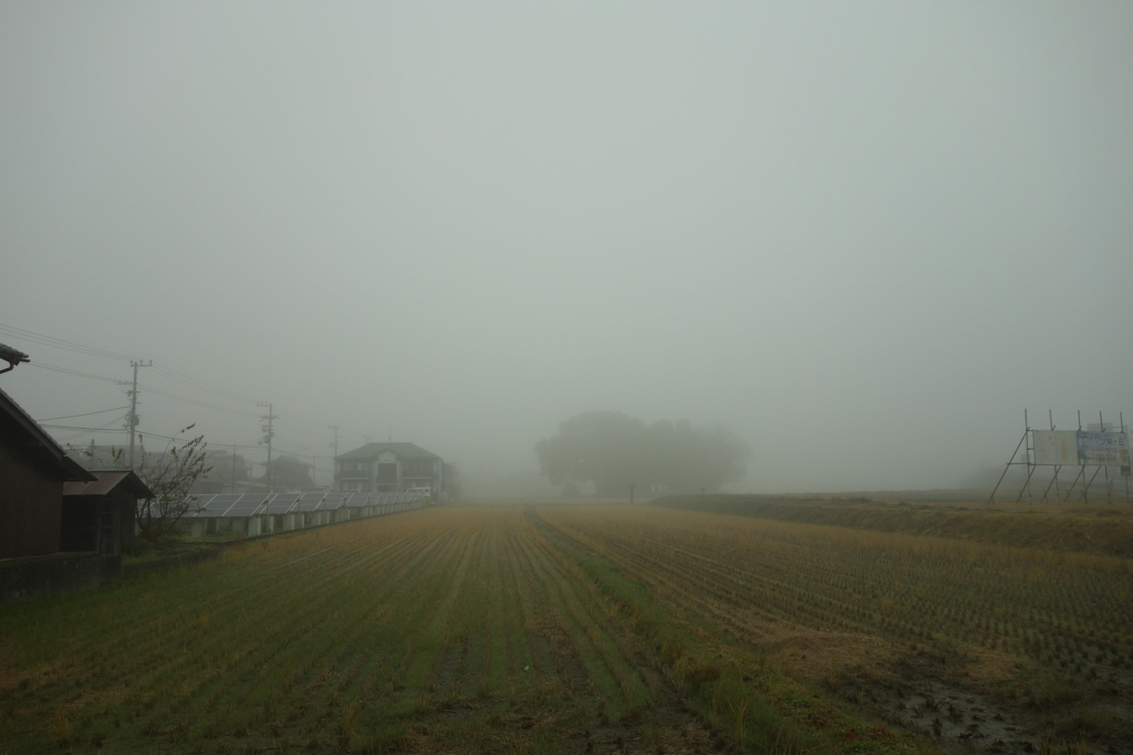 f:id:kyotomichi:20170103135854j:plain