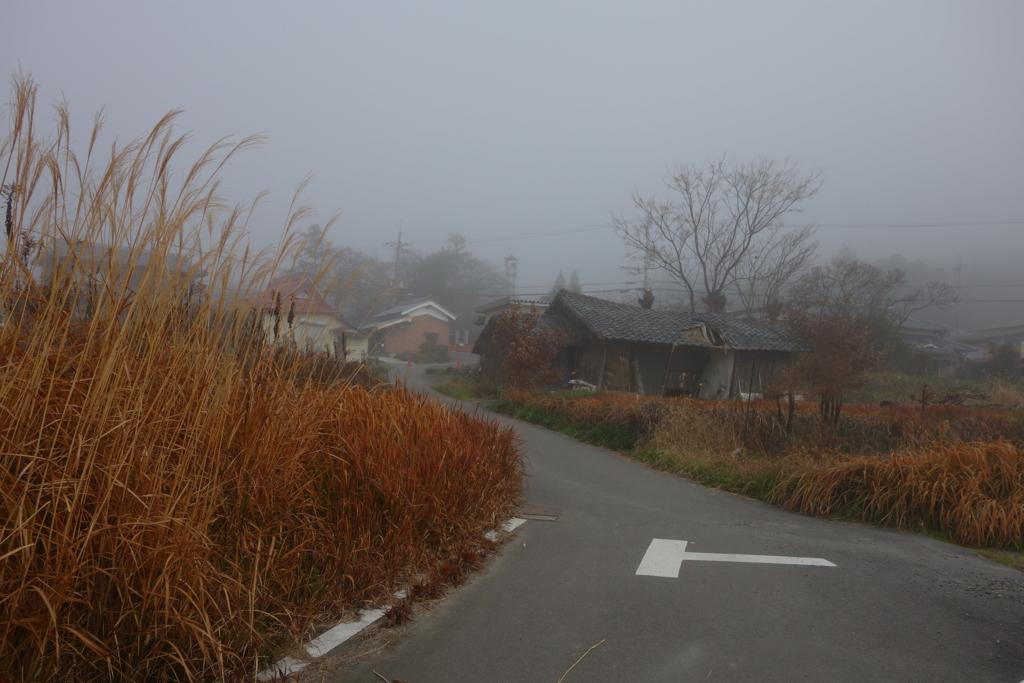 f:id:kyotomichi:20170103140134j:plain