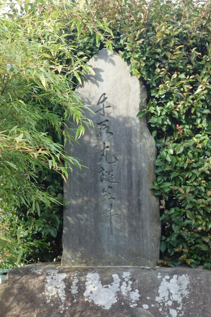 f:id:kyotomichi:20170103163311j:plain
