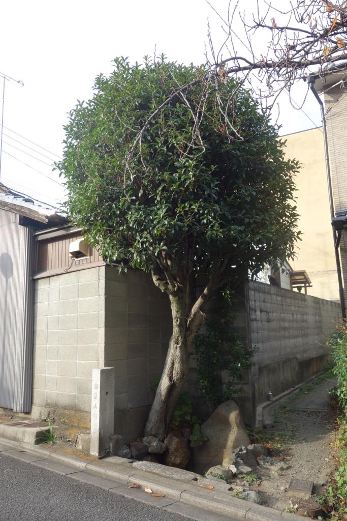 f:id:kyotomichi:20170103173335j:plain