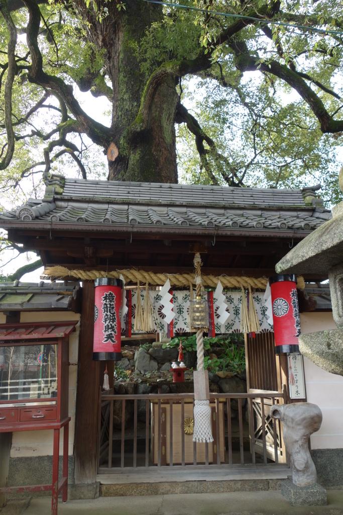 f:id:kyotomichi:20170109194743j:plain
