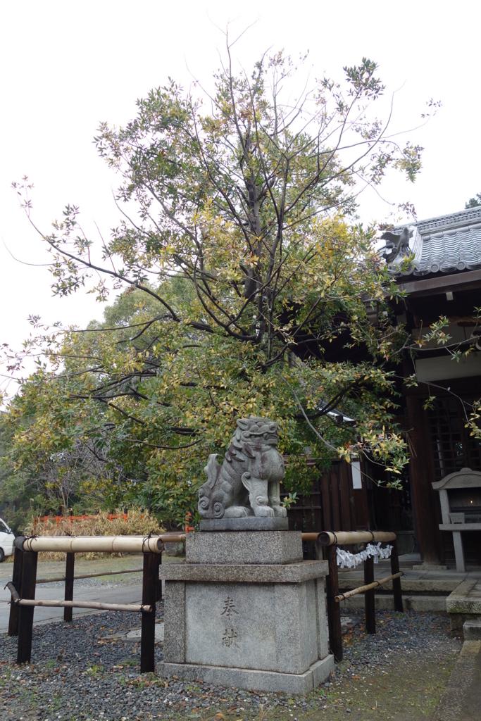 f:id:kyotomichi:20170109195420j:plain