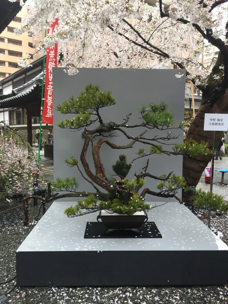 f:id:kyotomichi:20170409002023j:plain