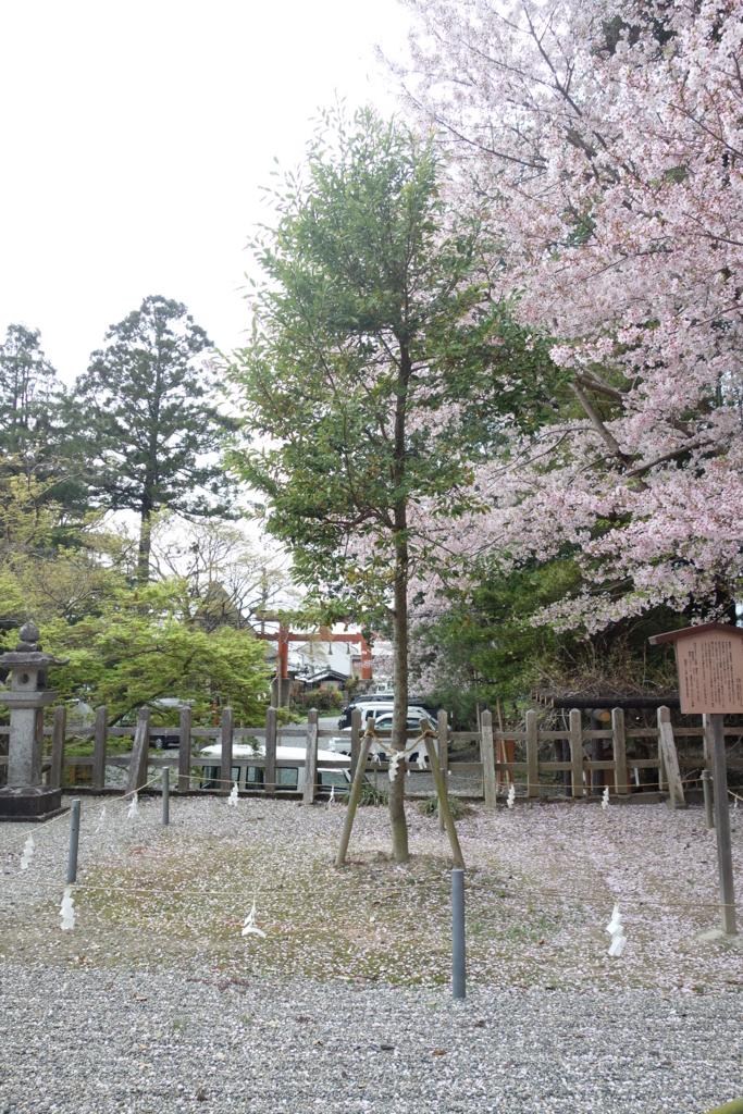 f:id:kyotomichi:20170504205914j:plain
