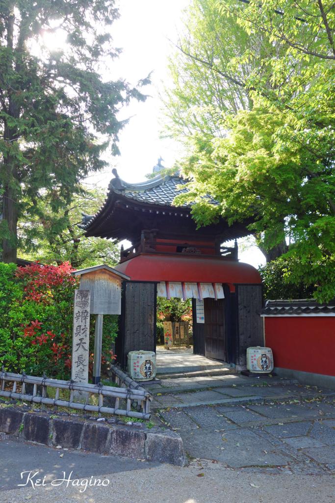 f:id:kyotomichi:20170505104651j:plain