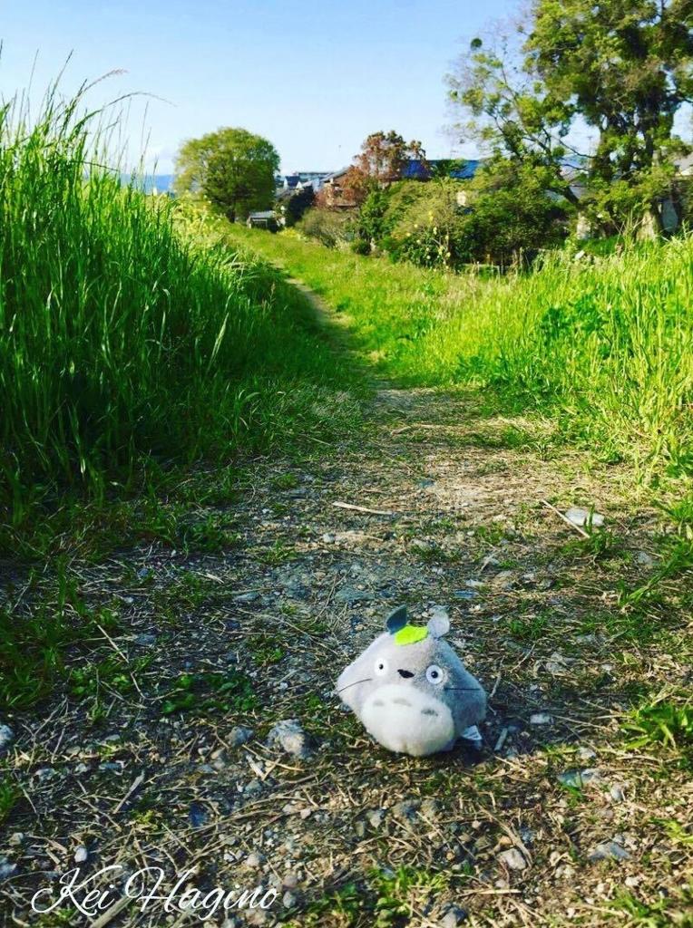 f:id:kyotomichi:20170505200454j:plain