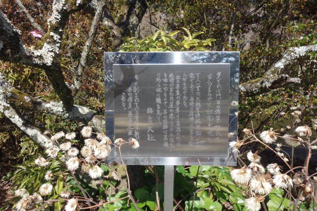 f:id:kyotomichi:20180310201702j:plain