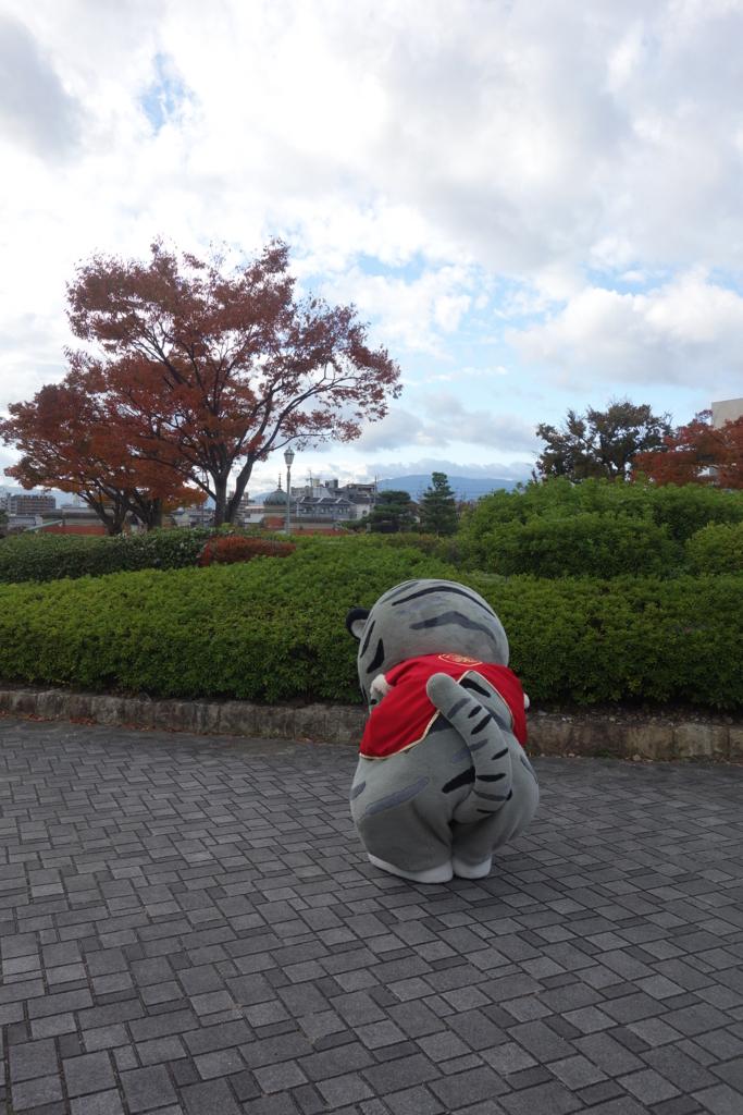 f:id:kyotomichi:20180311000226j:plain