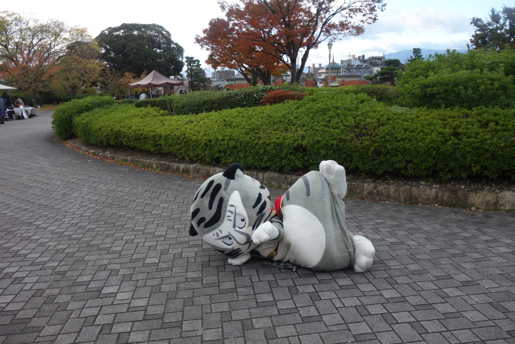 f:id:kyotomichi:20180311000331j:plain