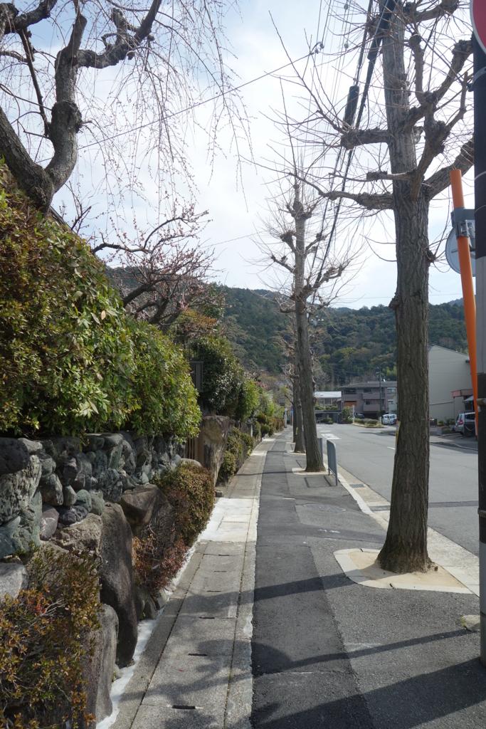 f:id:kyotomichi:20180318175314j:plain