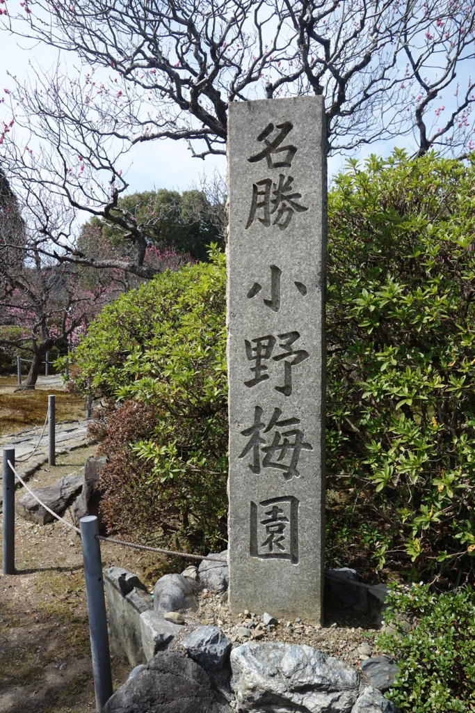 f:id:kyotomichi:20180318181200j:plain