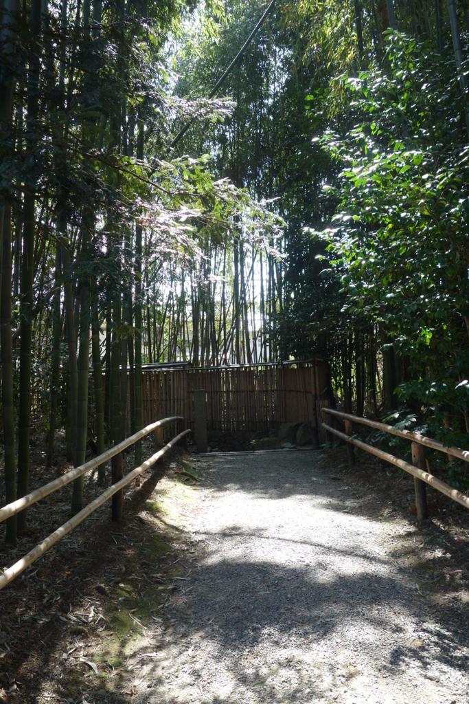 f:id:kyotomichi:20180318182540j:plain