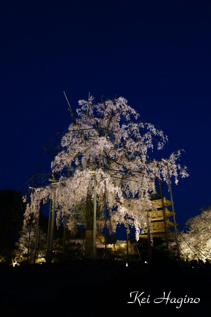 f:id:kyotomichi:20180331192013j:plain