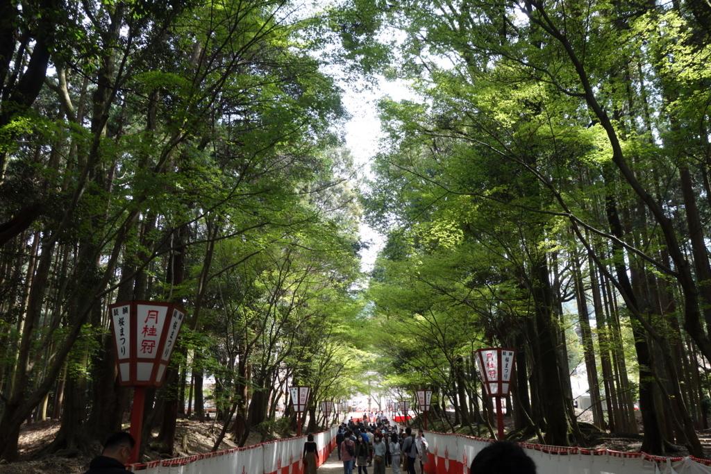 f:id:kyotomichi:20180401200411j:plain