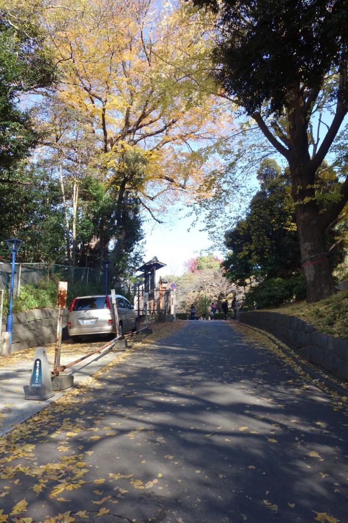 f:id:kyotomichi:20180815192702j:plain