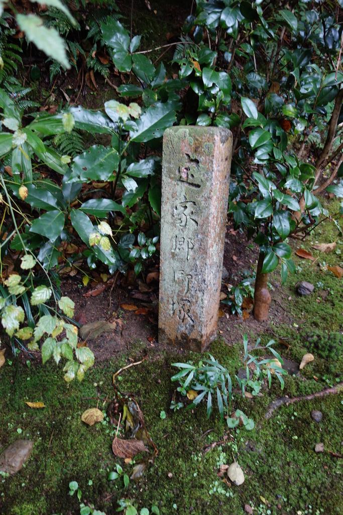 f:id:kyotomichi:20190103224154j:plain