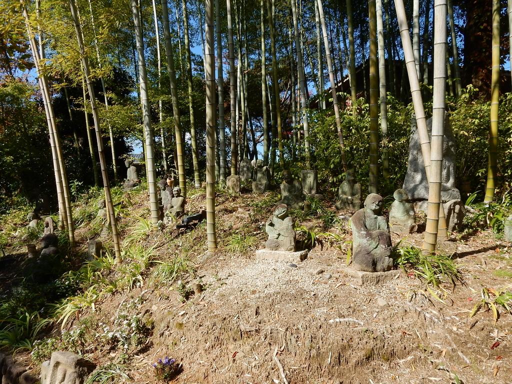 f:id:kyotomichi:20190119200700j:plain