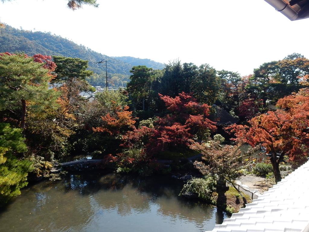 f:id:kyotomichi:20190119202800j:plain