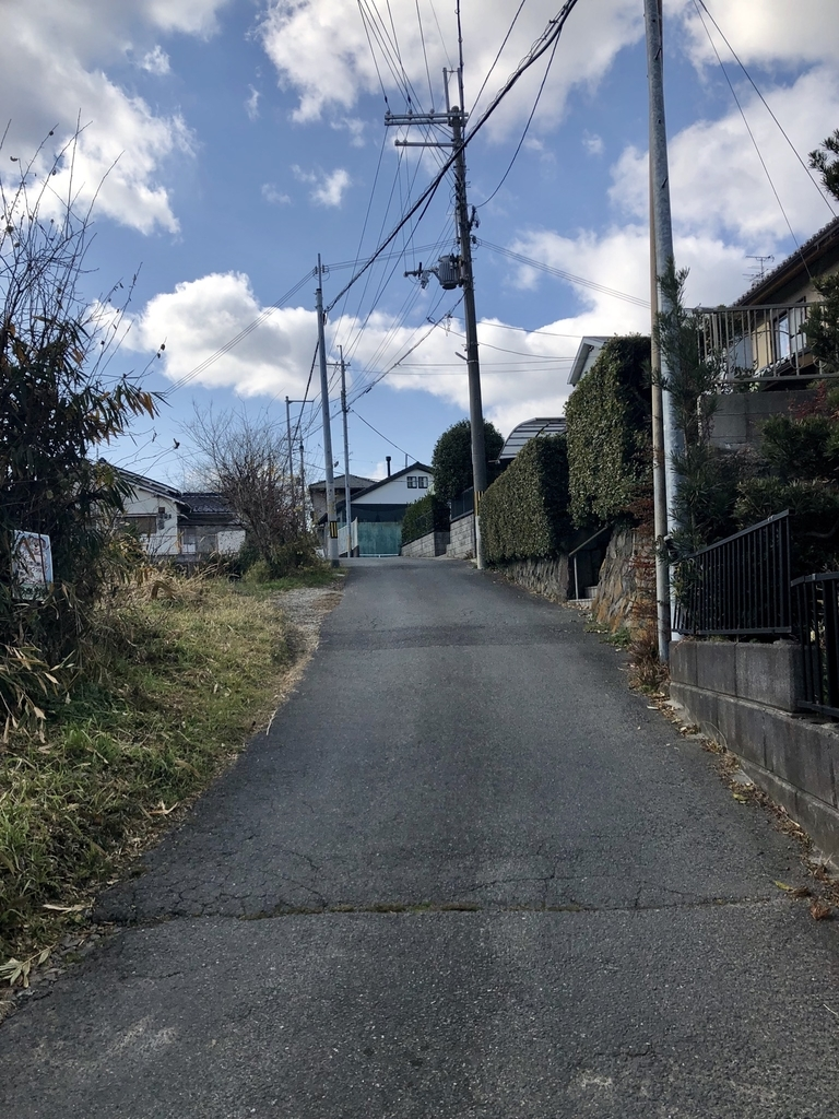 f:id:kyotomichi:20190124125309j:plain