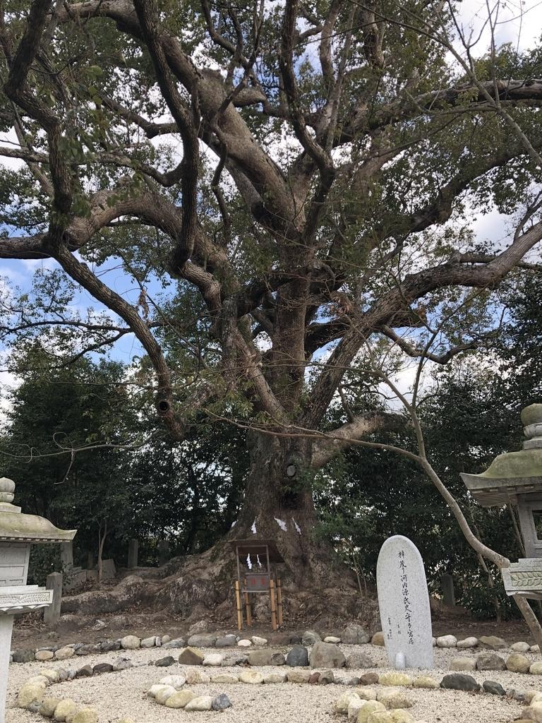 f:id:kyotomichi:20190124130100j:plain