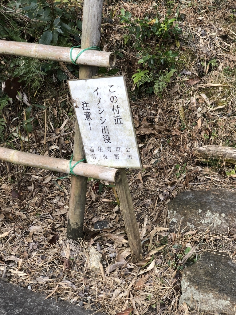 f:id:kyotomichi:20190210215615j:plain