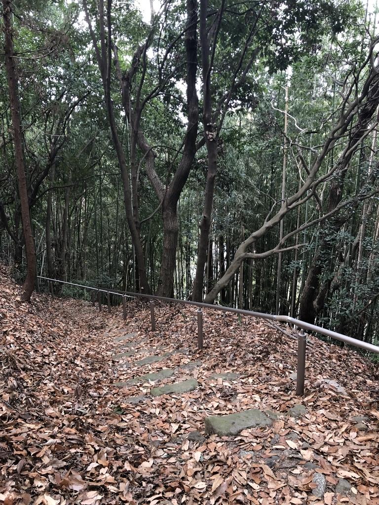 f:id:kyotomichi:20190210215751j:plain