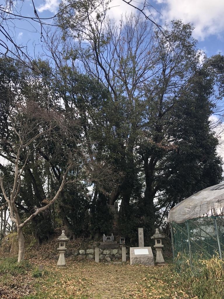 f:id:kyotomichi:20190210222122j:plain