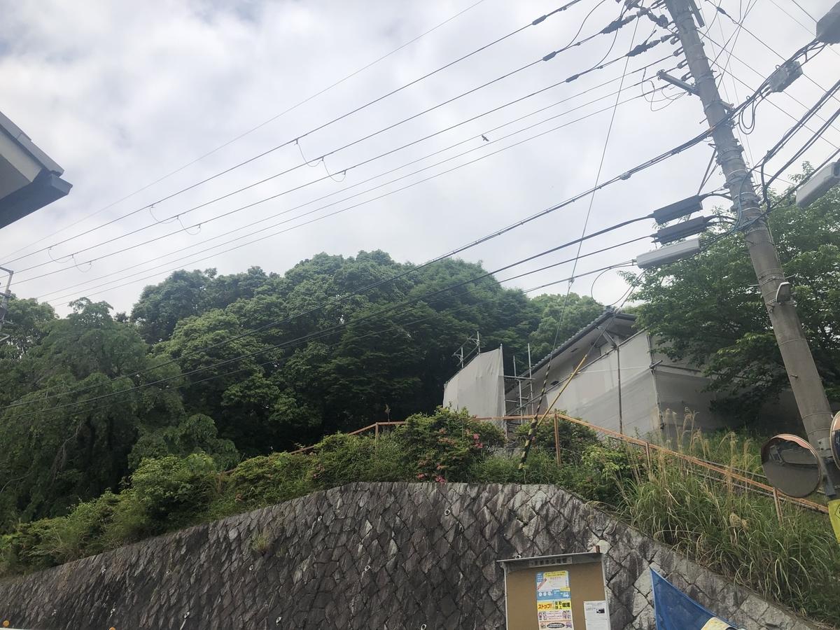 f:id:kyotomichi:20210125130033j:plain
