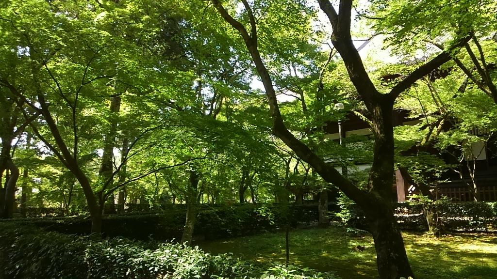 f:id:kyotomoyou:20160901123454j:plain